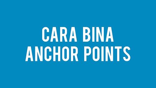 cara-bina-anchor-points-pada-wordpress